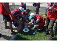 """Damla Projesi"""" Gönüllüleri Karabük'te"""