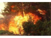 İzmir'deki yangına havadan müdahale başladı