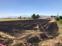 Korkuteli'de 12 dönüm tarım arazisi yandı