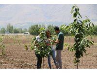 """""""Mutfaktan Bahçeye"""" projesinin uygulanması devam ediliyor"""