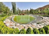 Aksaray Belediyesi 3 yılda 185 bin 570 adet ağaç dikti