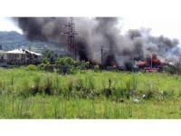 Gürcistan'da gaz istasyonunda yangın