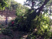 Beytüşşebap'ta şiddetli yağmur hayatı olumsuz etkiledi