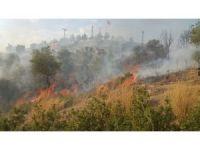 Milas'ta moloz alanında 5 gün arayla ikinci yangın