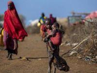 Nijerya'da teşhis edilemeyen hastalık salgını: 50 ölü