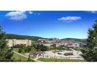 Düzce Üniversitesi Sosyal Bilimler Enstitüsü'ne yoğun ilgi
