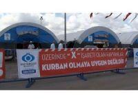 Sultangazi'de kurbanlıklar alıcılarını bekliyor