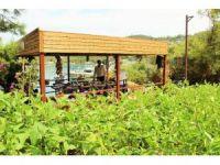 Lüks turistik tesiste organik tarım