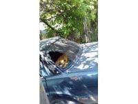 Denizli'de muhtarın otomobili kurşunlandı