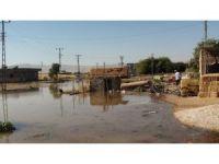 Patlayan su borusu köy meydanını gölete dönüştürdü