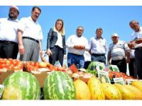 Aksaray'da Tarla Günü programı