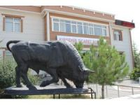 Kırşehir'de kurbanlıklar Pazar günü görücüye çıkacak