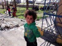 """Uluslararası Af Örgütü: """"Rakka'daki siviller büyük tehdit altında"""""""