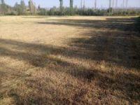 Tuzluca'da kuraklık