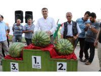Diyarbakır'ın en ağır karpuzu seçildi