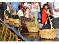 3. Trakya Bağ Bozumu ve Ekoloji Festivali kapılarını açıyor