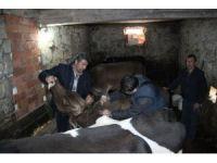 Kdz. Ereğli'de çok sayıda mahalle ve köy karantina altına alındı