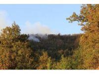 Zonguldak'ta orman yangını