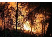 Karabük'teki orman yangınına müdahale sürüyor