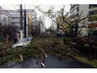 Porto Riko 6 ay elektriksiz kalacak