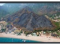 Yangınla kararan Adrasan, 1 yıl içinde 250 bin yeni fidanla yeşile büründü