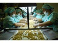 Düzce'den bin 84 ton iç fındık, 840 ton tavuk ayağı ihracatı yapıldı