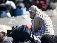 Edirne'de 207 kaçak ve sığınmacı yakalandı