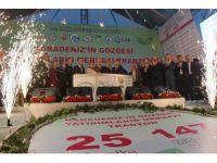 Trabzon'a 147 milyonluk yatırım