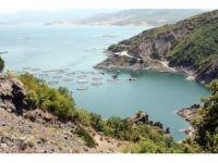 Tokat'ta yılda 5 bin ton balık üretiliyor