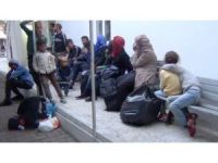 Ayvalık'ta 52 göçmen jandarmadan kaçamadı