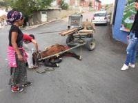 Halk dolmuşu at arabasına çarptı