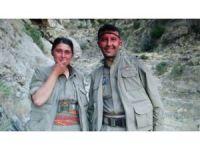 Mardin'de PKK'ya büyük darbe