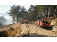 İzmir'deki orman yangını kontrol altında