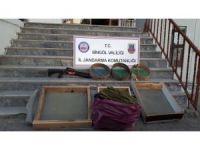 Bingöl'de 9 kilo esrar ele geçirildi