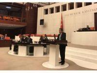 Aydınlıoğlu Arakan'daki katliamı kınadı