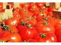 Meşhur Çanakkale domatesi 10 günde 3 kat zamlandı