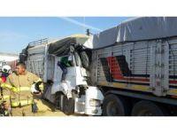 Kara yolu buğday tarlasına döndü: 1 yaralı