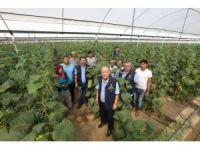Orman köylüsüne 2,5 milyon TL'lik destek