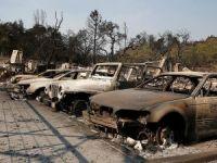 California'daki yangın 1 milyar dolarlık zarara neden oldu