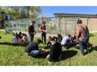 AGÜ Mimarlık Öğrencilerinden Kerpiç Atölyesi