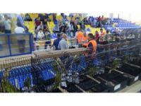 Kanaryalar Edremit'te yarışıyor