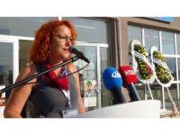 Türkiye'nin ilk yaban mantarı festivali başladı