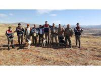 Sungurlu'da Jandarma avcıları denetledi