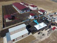 Büyükşehir Hınıs'ta gerçekleştirdiği yatırımların toplu açılışını yaptı