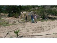 Çiftçilere destek için ÇATAK projesi