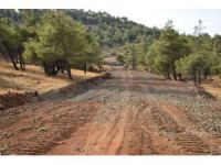 Yangınlara erken müdahale için yeni orman yolları yapıldı