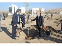 Pınarbaşı'nda her öğrencinin dikili bir ağacı olacak