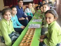 İlkokul öğrencilerine 'Zeka oyunları kursu'