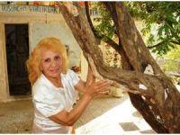 -Türkiye'deki çürüyen tüm ağaçları kurtarmak istiyor