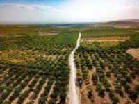 Büyükşehir'den Akçadağ ile Yazıhan arasında alternatif yol